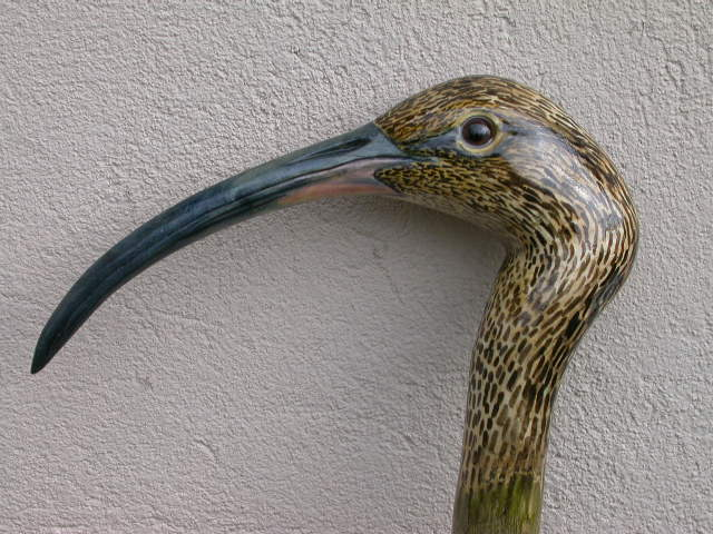 Curlew in ash